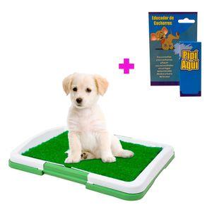 Baño Perros Cachorros Ecológico Puppy Potty Portátil y Pipí Aquí